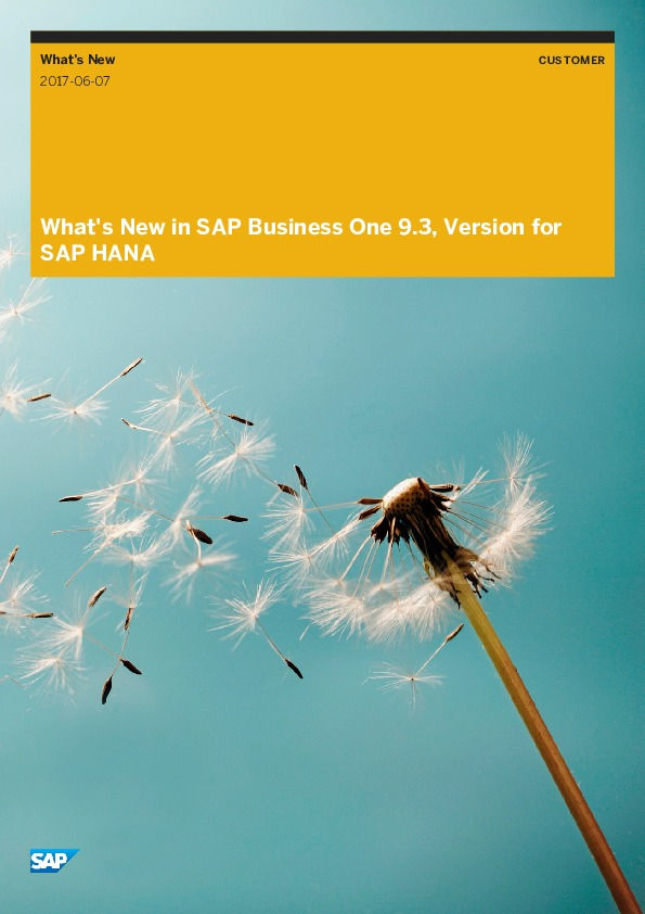 SAP Business One Version 9.3 Release Highlights